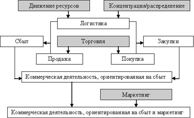 Содержание основных видов